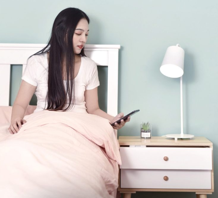foto mostrando el uso del candado con el smartphone