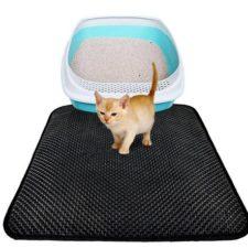 alfombrilla para gatos, arenero y un gato pequeño encima de la alfombrilla