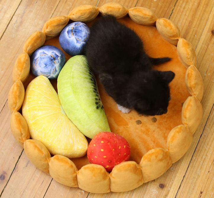 cama con forma de tarta de frutas con un cachorro de gato sentado encima