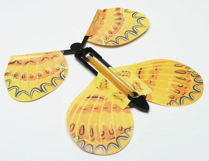 mariposa extendida sobre una mesa