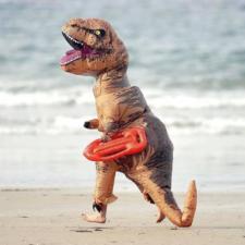 Disfraz de T-Rex en la playa