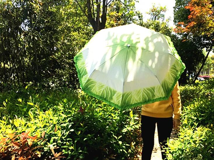 paraguas de lechuga abierto
