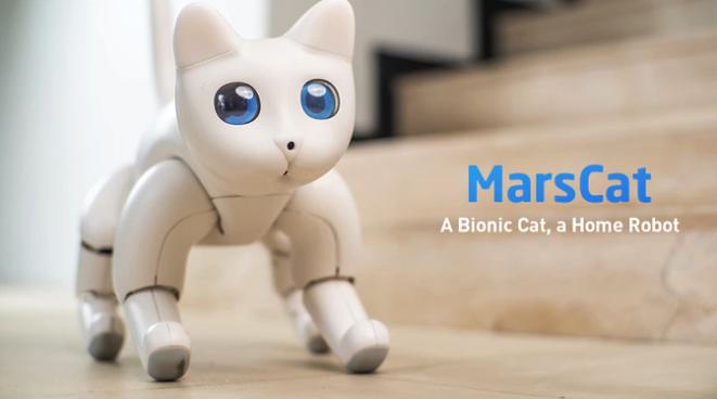 MarsCat el gato robótico
