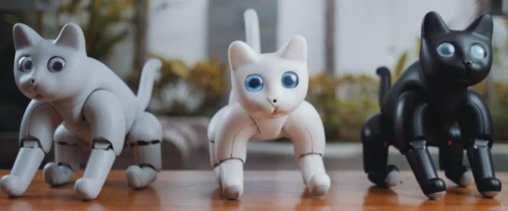 MarsCat el gato robótico en tres colores distintos