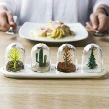 Set Botes de Especias Plantas en la mesa